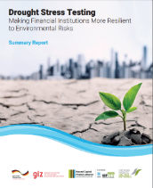 Drought stress testing tool: Making financial institutions more resilient to environmental risks